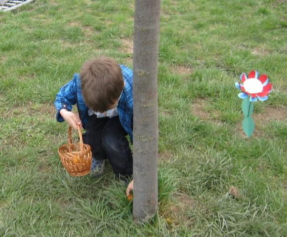 tojásvadászat